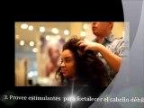 Tratamientos capilares naturales para frenar la caída del cabello