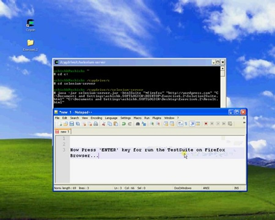 Selenium RC and Cygwin Example