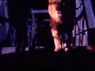 RAKSHAK THE  PROTER clips 14