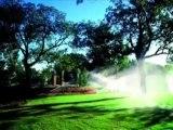 Water Garden Design Services Bergen County, Pond Service Morris County