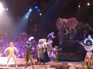 Le ROI LION /  The lion king   ( SPECTACLE )