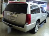 Used 2008 Cadillac Escalade ESV Downers Grove IL - by EveryCarListed.com