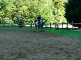 trot assis et petite eed