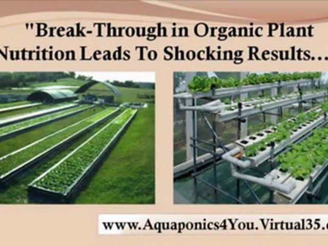 homemade hydroponic systems – aquaponics how to – home hydroponics