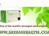 What is Chaga Mushroom? What is Chaga Extract? What does Chaga do? What is chaga benefits?