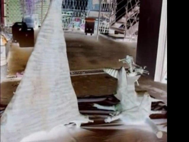 Tempo-Balade pour un Léopard en vacances