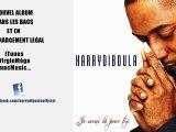 "Harry DIBOULA ""Si tu veux"" - Zouk 2011"