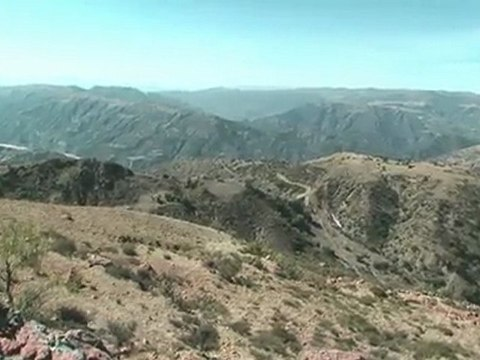 El Terrado Potosi Bolivie - Apapaya (c) 2010