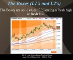 Fibonacci Tiger Grid Forex Trading Software Tutorial - Newbie Level