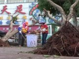 Hainan Province Recovers from Typhoon Nesat