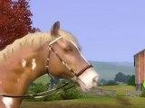 Webisode 1 - Shy'm présente Les Sims 3 Animaux et Compagnie
