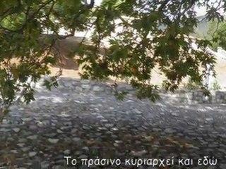 (foto)2η επίσκεψη στο Στείρι, η ευρύτερη περιοχή BY VIOTIASHOP