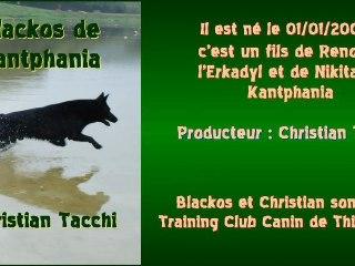 Blackos de Kantphania - Championnat de France de Campagne