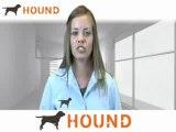 Archicad Jobs, Archicad Careers, Employment | Hound.com