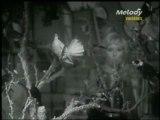 """--Sophie DAREL (télé n&b)-- """"""""ah!!..si tous les oiseaux....."""""""""""
