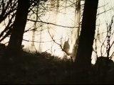 Hell - Schweizer Trailer