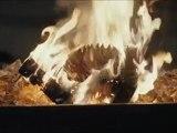 Der Verdingbub - Schweizer Trailer