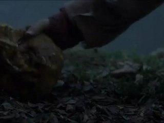 Ptérodactyl Cage - clip Ptérodactyl Cage (Anglais)