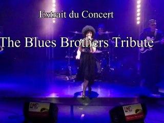 """Extrait du concert """"The Blues Brothers Tribute"""""""