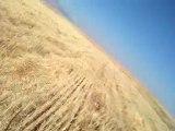 """""""PRADA""""KURZHAAR VON KONYA 15.10.2011  BILDIRCIN"""