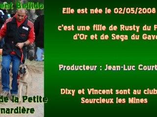 Dixy de la Petite Renardière - Grand Prix 2011 de Campagne