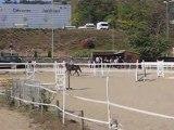 Saut d'obstacle a cheval
