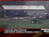 Des animaux sauvages s'échappent d'un zoo de l'Ohio