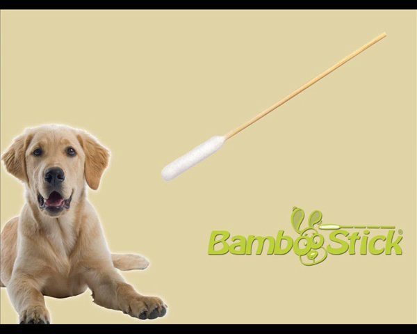 BambooStick: the best  dog ear cleaning technique