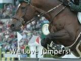 Horse Jumps - Jumping Horses
