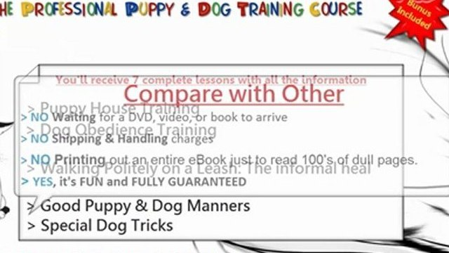 Train Your Dog And Puppy To Sit, Down, Stand