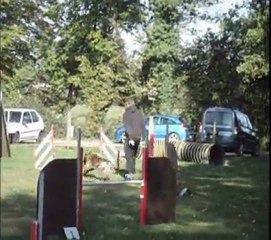 Bande annonce Agility 2012