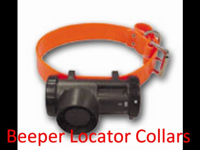 Dog Training Collars – Tracking – Bark Control – TrainingCollarStore.com