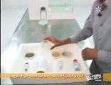 EchoEco 15/03/2010 partie2 (agriculture maroc souss massa)