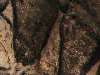La grotte Chauvet en 3D (anaglyphes)