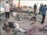 Hamas tarafından dünyaya gönderilen video izle paylaş video izle//BURASI FİLİSTİN//