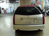 Used 2007 Cadillac SRX Downers Grove IL - by EveryCarListed.com