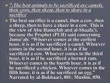 13 qs on Udhya for dead , Best udhya,pilgrims mistakes,denying faith,divorxe,dead & Eid prayers