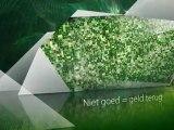 Online Kunst kopen - Video over Kunst Kopen bij Nuvo