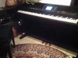 Piano Cvp 503..