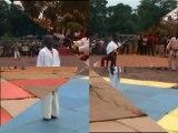 Fédération Centrafricaine de Karaté et des Arts Martiaux Affinitaires FECKAMA