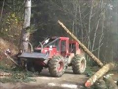 coupe bois tamié Extension Maison du Parc