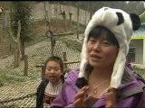 Giant pandas heading to Britain