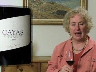 Cayas Syrah du Valais Réserve 2009 de Jean-René Germanier - Wine Tasting