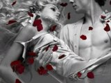Diary of Dreams - Wedding