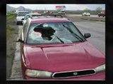 10453  prices on auto glass