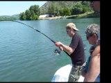 Stage de pêche au silure sur le Rhône