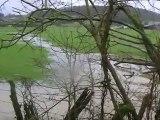 St Albert Vrigne Meuse Vrigne aux bois cours d'eau