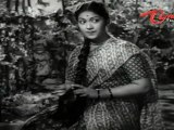 ANR Old Songs   Donga Ramudu   Chigurakulalo Song   ANR   Savitri