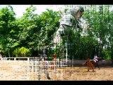 Concours cheval (Diapo)