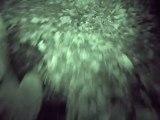 Monster Hunter Freedom Unite (PSP) - Chasse aux monstres